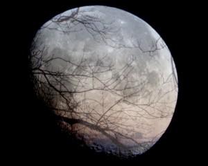 Mondabend-1